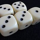 Roll the Dice by trish725
