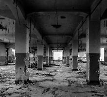 Beko Factory Belgrade 03 by Andreas Theologitis