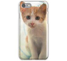 Ginger Bundle iPhone Case/Skin