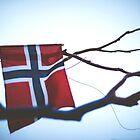 Norway by Andrey Serdyuk