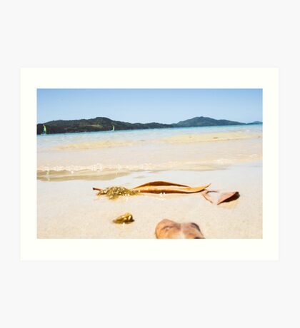 Oh To Be Washed Ashore Art Print