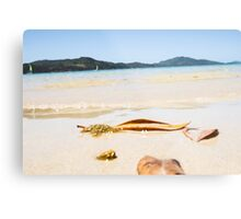 Oh To Be Washed Ashore Metal Print