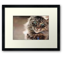 Smudge in August Framed Print