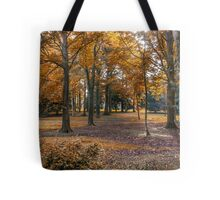 Autumn in the Woods Tote Bag