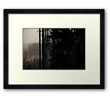 Winter, forest, mountains Framed Print