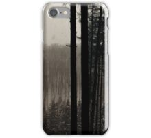 Winter, forest, mountains iPhone Case/Skin