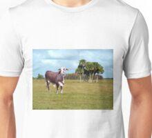 BRAFORD BULL Unisex T-Shirt