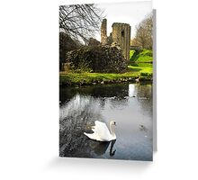 Beauty amongst the ruins Greeting Card