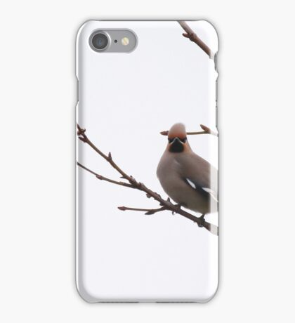 Waxwings rest iPhone Case/Skin