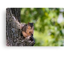Remember our deal...2 peanuts for posing! Canvas Print