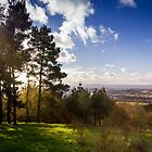 Sun Rays Over Clent Hills by StephenRphoto