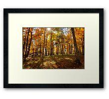 stone mountain | autumn glow 01 Framed Print