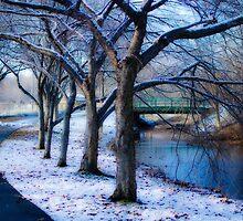 Oh, no! Snow! by LudaNayvelt