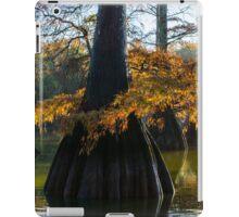 Cypress Tree Delight iPad Case/Skin