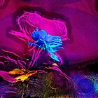 Astral Flowers by michel bazinet