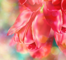 Bokeh Background with Tulips Sticker