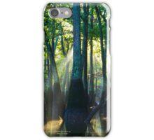 Tupelo Trees  iPhone Case/Skin