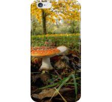 Amanita Fall Colors iPhone Case/Skin
