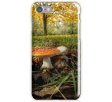 Amanita Fall Colors iPhone Case/Skin