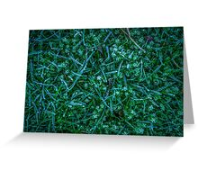Frosty Grass Greeting Card
