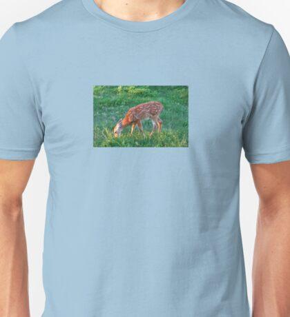 Wings Of Pegasus Unisex T-Shirt