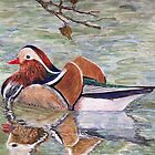 MANDARIN DUCK - water colour  by Marilyn Grimble