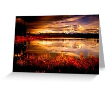 Colors in Fall Greeting Card