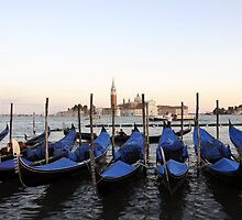 Row of Gondolas in Venice by dunawori