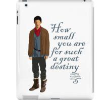 Great Destiny (light) iPad Case/Skin