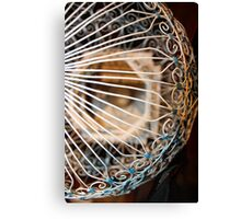 White Bird Cage Canvas Print