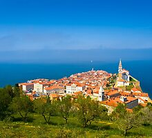 PIRAN 02 by Tom Uhlenberg