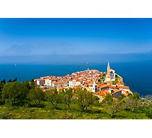 PIRAN 02 Photographic Print
