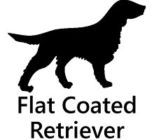Flat Coated Retriever Silhouette by kwg2200