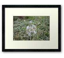 Bubble on Cut Grass Framed Print