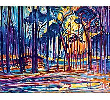 Mondrian Woods Near Oele Photographic Print