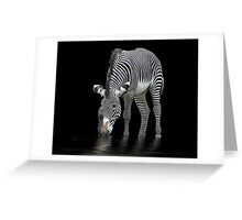 The Zebra and The Mill Pond Greeting Card