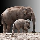 Mother and baby by dunawori