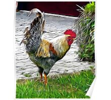 Rugged Rooster Poster