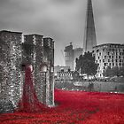 Blood Swept Lands 3 by Chris Thaxter