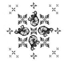 Snails Photographic Print