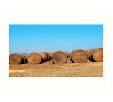 Round Bales Of Hay Art Print