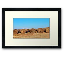 Round Bales Of Hay Framed Print