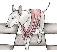 Bull terrier vector Photographic Print