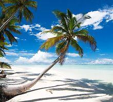 Canoe Beach II - Cocos (Keeling) Islands by Karen Willshaw