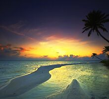 Light of Dawn - Cocos (Keeling) Islands by Karen Willshaw
