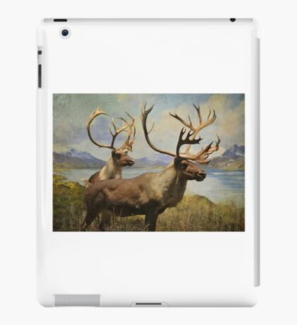 Lords of the Noryh iPad Case/Skin