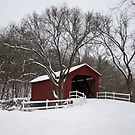 Winter at the Sandy Creek Coverd Bridge by barnsis