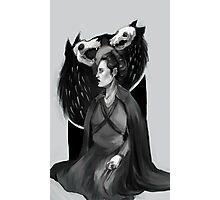 Sansa Stark: Porcelain, Ivory, Steel Photographic Print