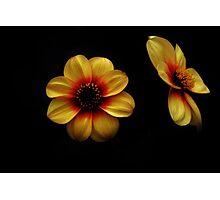 dark and light Photographic Print