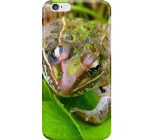 Leopard Frog iPhone Case/Skin